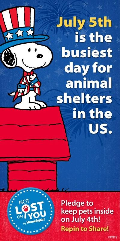 Pass it on and pledge to keep pets indoors on July 4th. July 5th is the busiest day for animal shelters in the U.S.