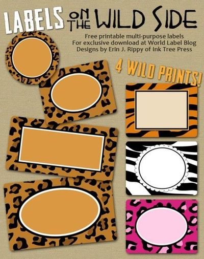 Jungle Theme Classroom Sayings http://www.juxtapost.com/site/permlink/593a8c10-cc0c-11e1-9b40-bf244956527d/post/these_are_perfect_for_labeling_jungle_classroom/