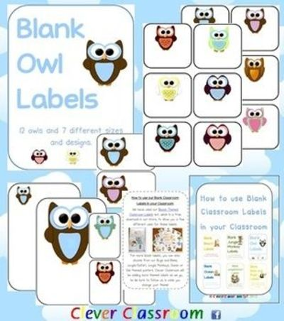 owl themed blank classroom labels pdf file 48 pages plu