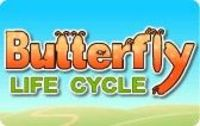 Butterfly Life Cycle: Game