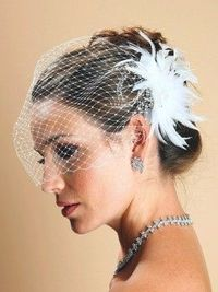 Birdcage veil with feathers