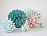 Hand painted pine cones x