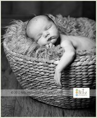 Baby in Basket - Baby Pictures