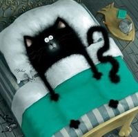 Cat and mouse in bed. Illustration by Rob Scotton.