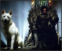 Jon snow and ghost - #GameofThrones