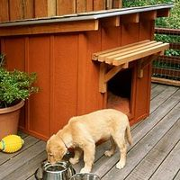Ranch Dog House Plans