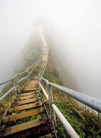 Stairway to Heaven, Oahu, Hawaii.