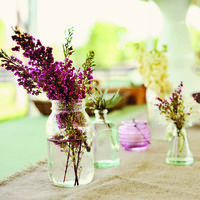 Rustic and purple.