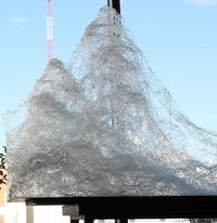 Networktopia is a piece that was developed over a two-day period by artist Kim Harty. During the demonstration/performance, she dripped hot glass strings onto a platform and slowly built the glass up into mountain-like sculptures. The topographical piece ...