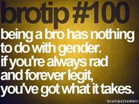 What a bro really is