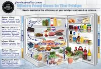 Where Food Goes In The Fridge