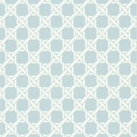 Echo Trellis Wallpaper for laundry?