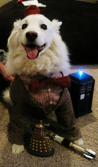 Dogtor Woof Cosplay [Pic]