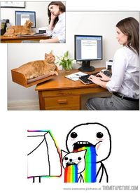funny puking rainbows meme face- Lol Image