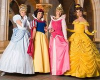 Disney princesses ... I'm partial to Belle.